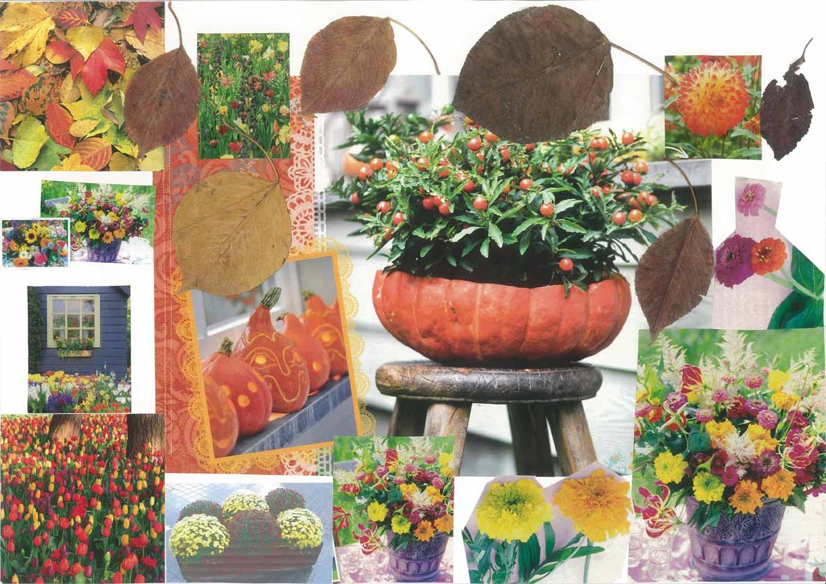 Herfstcollage